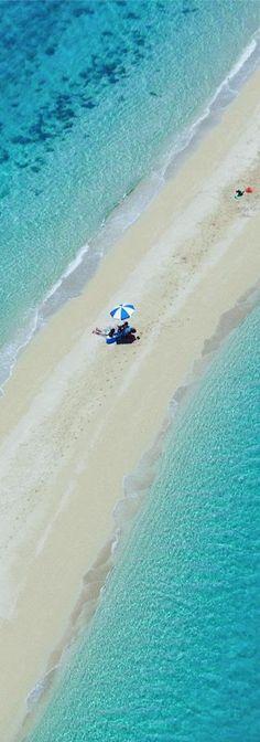 .Hayman IslandcGreat Barrier Reef, Australia