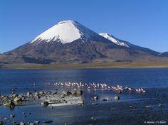 Lago Chungará, Volcanes Parinacota y Pomerape, Arica / Chile