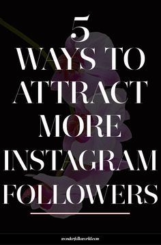 5 ways to grow your instagram following: tips for improving your instagram feed to attract more followers. Implementing small changes can make a HUGE difference getting potential clients to follow you!