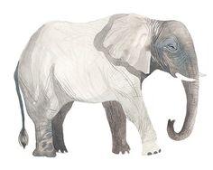 Elephant от unitedthread на Etsy