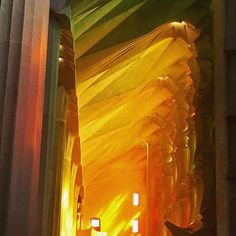 Sunset inside the Sagrada Familia. Gaudí said that colour was the way life expresses itself, which is why he decided to make its presence felt in the church. One of the most blissful moments of last summer! #tbt #unforgettable #livecolorfully #architecture #church #gaudí