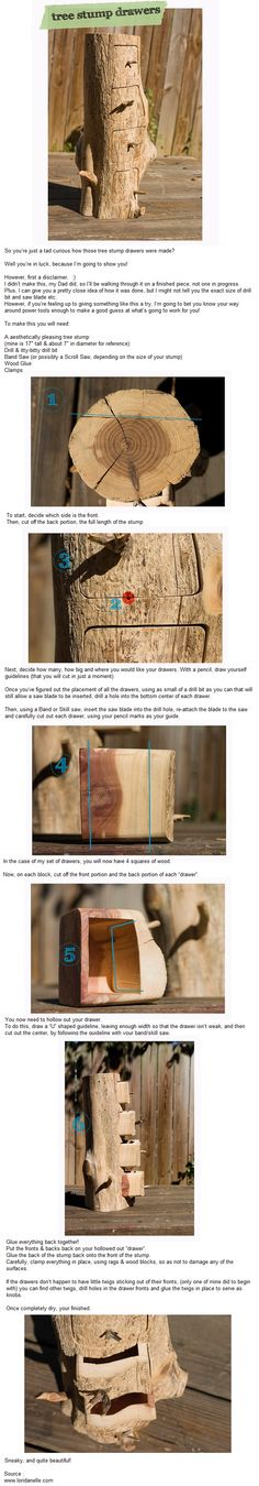 Tree Stump Drawers