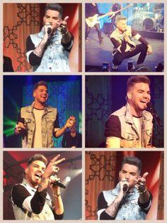 Adam Lambert collage