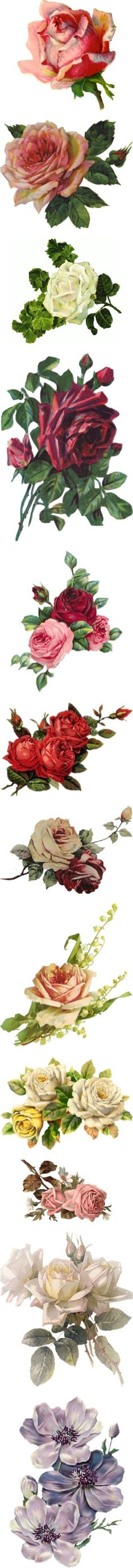 """Victorian Flowers"" by maneevanit on Polyvore"