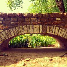 Potter Lake bridge.