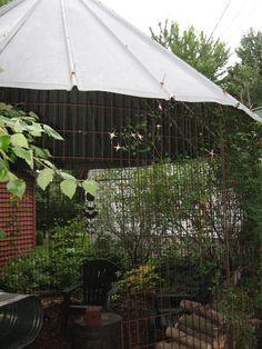The corn crib gazebo...