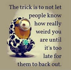 Minions, quote, citat, cute, funny, haha.. The trick is to not let people know how really weird you are until it's too late for them to back out.