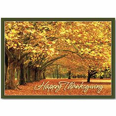 Canopy of Gold Thanksgiving Cards | Deluxe.com