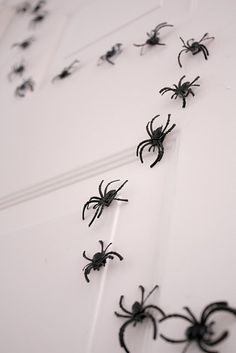 magnet spiders - so doing in this in the break room on the fridge next year for Halloween!
