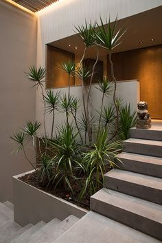 In this web, we often discussing about outdoor garden. The tips and tricks, the design ideas, many things. But today, we'll not talking about outdoor garden. Today we will talking about indoor garden. Home Design, Home Interior Design, Exterior Design, Design Ideas, Floor Design, Villa Design, Design Trends, 1970s House, Escalier Design