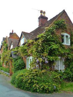 Wisteria covered cottages, Alrewas, Staffordshire, England