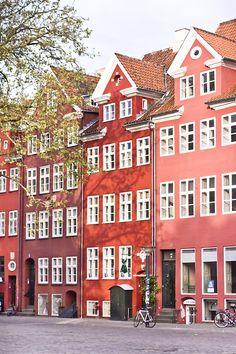 Copenaghen - La gatta col piatto che scotta