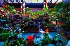 Disney Resorts -- Polynesian Resort lobby