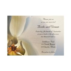 #Orchid Elegance #Wedding #Invitation  http://www.zazzle.com/loraseverson*  Invite your friends and family to your upcoming nuptials with the pretty Orchid Elegance Wedding Invitation. Customize it with the personal names of the bride and groom and specific marriage ceremony details. This classy custom botanical wedding invite features a close up floral photograph of a white phalaenopsis orchid flower blossom. Perfect for the couple who have planned an elegant orchid wedding theme.