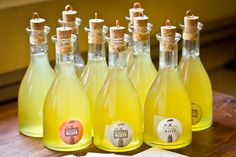 Limoncello – Volume Three of the Liqueur Library Cocktails, Party Drinks, Cocktail Drinks, Fun Drinks, Alcoholic Drinks, Beverages, Drinks Alcohol, Refreshing Drinks, Homemade Liquor
