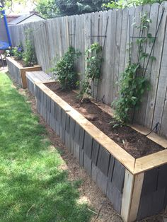Raised garden bed along fence. Final phase. Used leftover roof shingles.