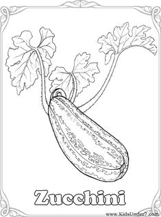 Vegetables Coloring Pages. Find free coloring pages, color pictures in VEGETABLES coloring pages. Print out and color t. Train Coloring Pages, Food Coloring Pages, Adult Coloring Book Pages, Free Coloring, Coloring Books, Vegetable Coloring Pages, Vegetable Drawing, Vegetable Pictures, Fruits Drawing