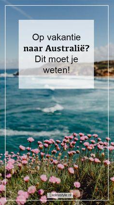 Roadtrips, Roadtrip Australia, Amazing Places, Nepal, The Good Place, Travel Inspiration, Europe, Australia, Rice