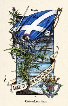 Scottish Thistle, Scottish Clans, Scottish Unicorn, Scottish Tattoos, Scottish Culture, Scotland History, Scottish Independence, Fine Art, Art Prints