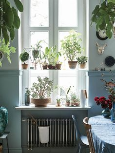 The city apartment of artist Radek and florist Łukasz – IKEA Decor, Wall Garden, Interior, Rustic Diy, Modern Cozy Living Room, Home Decor, Vintage Farmhouse Kitchen, Bohemian Style Bedrooms, Indoor Plants