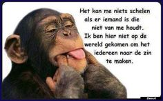 Thats true. Dutch Quotes, Don't Like Me, Good Morning Greetings, Dad To Be Shirts, Funny Cards, Funny Babies, Beautiful Words, Sarcasm, In This World