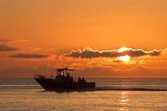 1000 images about fishing at langara island on pinterest for Langara fishing lodge