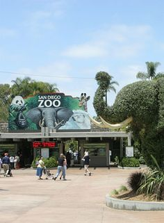 San Diego Zoo will be visiting in a few days.