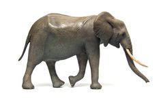 1:22 scale African Bush Elephant cow - sculpted by Andrew