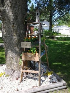 birdhouse ladder with drawers for annuals