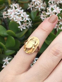 Egyptian Revival Scarab Beetle ring 18k gold/10k gold band