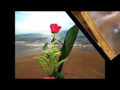 VIDEO CON FRASI D'AMICIZIA CON MUSICA CREATO DA BY FABIO - YouTube