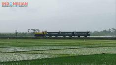 perjuangan hunting kereta api di tengah hujan (Dhannie Setiawan)