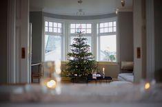 Scandinavian christmas tree