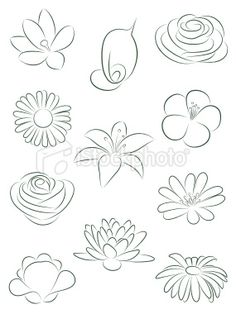 Set of flowers. Vector illustration. Royalty Free Stock Vector Art Illustration