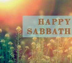 Happy Sabbath Images, Happy Sabbath Quotes, Sabbath Rest, Sabbath Day, Sabbath Activities, Get Closer To God, Seventh Day Adventist, Believe In God, Scripture Art