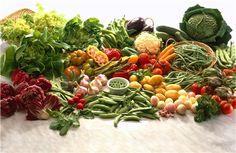 Enfeksiyon hastalıklarına daha çok yakalandığımız kış aylarında vitamin ihtiyacımız daha çok artmaktadır.
