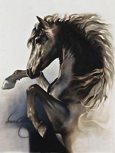 kitsch black horse sara moon