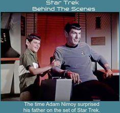 Star Trek Crew, Star Trek 1, Watch Star Trek, Star Trek Spock, Star Trek Cosplay, Star Trek Images, Star Trek Original Series, Star Trek Characters, Star Trek Starships