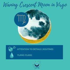Waning Crescent Moon in Virgo #waningcrescnt #moon #lunar #virgo #lunarselfcare #moonmagick Virgo Moon, Moon Magic, Natural Energy, Astrology, Essential Oils, Mood, Essential Oil Blends