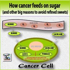 HOW CANCER FEEDS ON SUGAR | RAW FOR BEAUTY