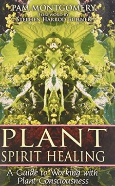 Plant Spirit Healing: A Guide to Working with Plant Consciousness by Pam Montgomery http://www.amazon.com/dp/1591430771/ref=cm_sw_r_pi_dp_0p7Pwb0EP5GX2