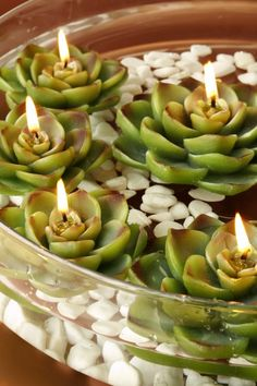 Succulent Floating Candles                                                                                                                                                                                 More