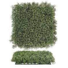 Pacific Silkscapes introduces a new line of boxwood wall mats used to create artificial garden walls. We can also apply to walls and outdoor structures. Artificial Plant Wall, Artificial Boxwood, Outdoor Walls, Indoor Outdoor, Boxwood Garden, Ivy Wall, Flower Wall, Outdoor Structures, Floral Wall