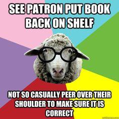 Shelver Sheep