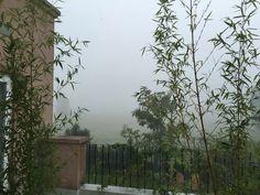 Llueve sin parar
