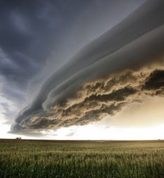 A shelf cloud is similar to lenticularis cloud, but on a much larger scale. a shelf cloud sometimes forms ahead of a severe, long-lasting thunderstorm such as a.