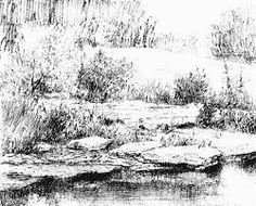 Image result for how to draw realistic bushes