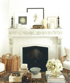 cool coffee table decor, mantle and peek-a-boo turtle sheel in fireplace