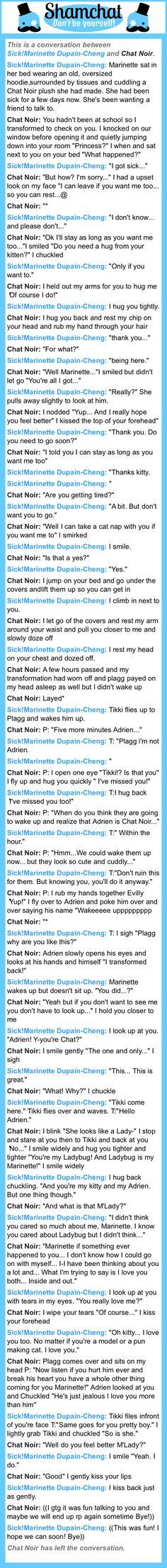 A conversation between Chat Noir and Sick!Marinette Dupain-Cheng