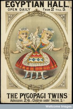 Poster: Egyptian Hall, open daily from 2 till 5 : The Pygopagi Twins. C. 1880